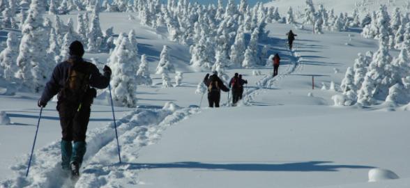 Parc gaspésie ski